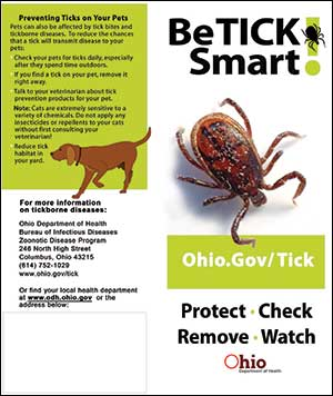 Brochure: Be Tick Smart