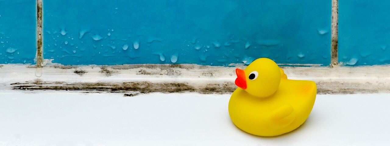 Image of a rubber ducky in a moldy bathtub