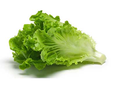 Image of Multistate E. coli Outbreak Associated with Romaine Lettuce